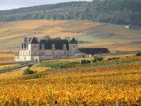 Clos de Vougeot (Le) - Abbaye