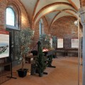 Morimondo (Italia – Lombardia) : mostra di pergamene testamentarie del XII secolo