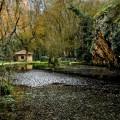 Piedra-fondo-Lago-del--Espejo1
