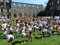 Flash Mob à l'Abbaye de Villers