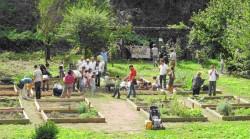 Jardins de Parabagio