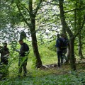 Inventaire forestier à l'abbaye de Villers